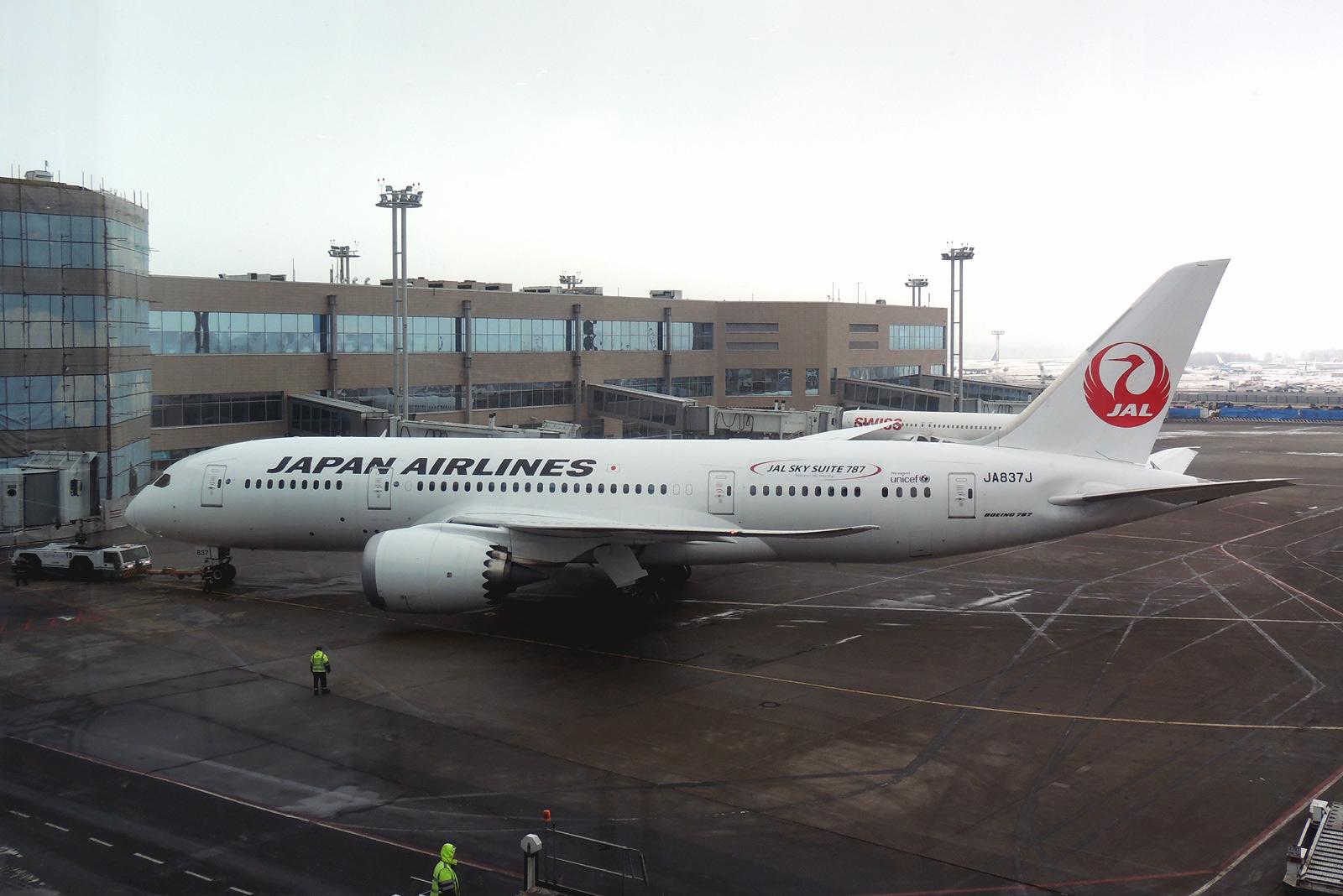 Самолет Боинг-787-8 JA837J авиакомпании JAL в аэропорту Домодедово