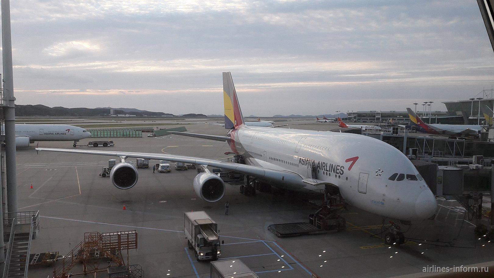 Asiana Airlines. Полет на 5 звезд, в лучшем экономическом классе мира 2016 года, ICN-BKK на Airbus A380.
