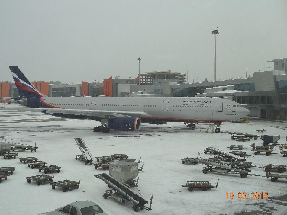 Билеты на самолет сеул москва аэрофлот купить билет на самолет из пензы в казань