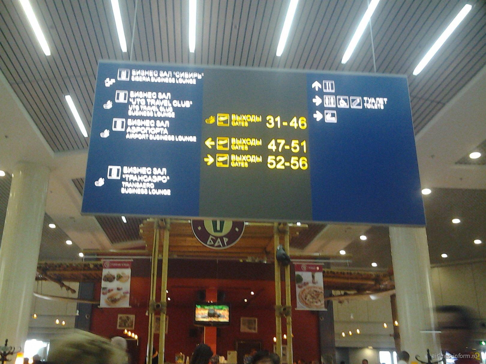 В аэропорту Москва Домодедово