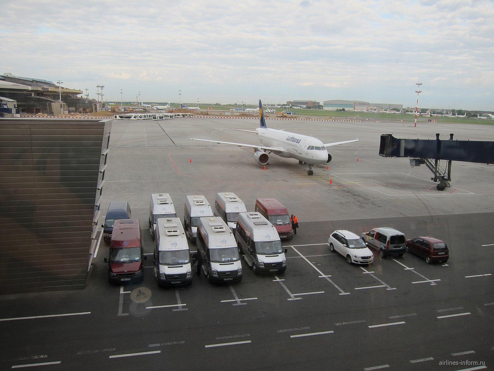 Утро в аэропорту Внуково