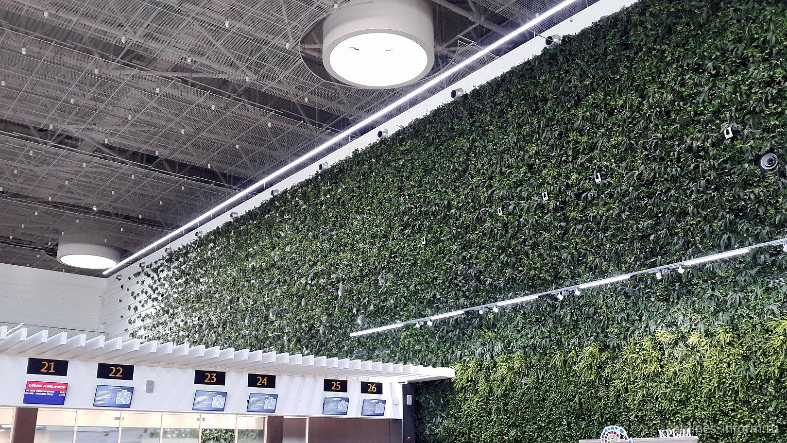 """""""Зеленая стена"""" в пассажирском терминале аэропорта Симферополь"""