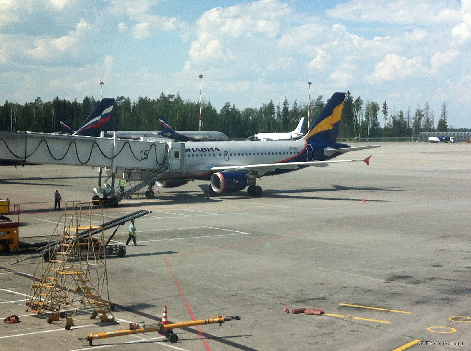 Airbus A319 авиакомпании Донавиа в аэропорту Шереметьево