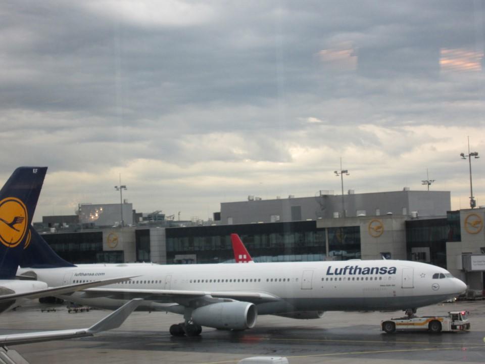 Airbus A330 Люфтганзы в аэропорту Франкфурт-на-Майне