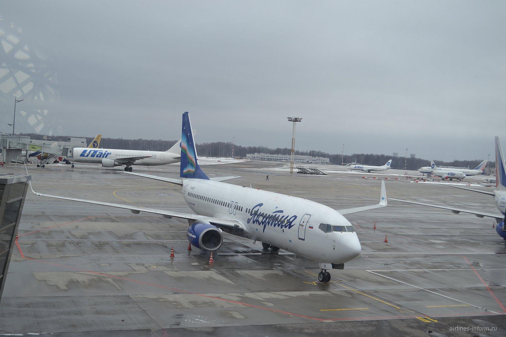 """Самолет Боинг-737-800 авиакомпании """"Якутия"""" в аэропорту Внуково"""