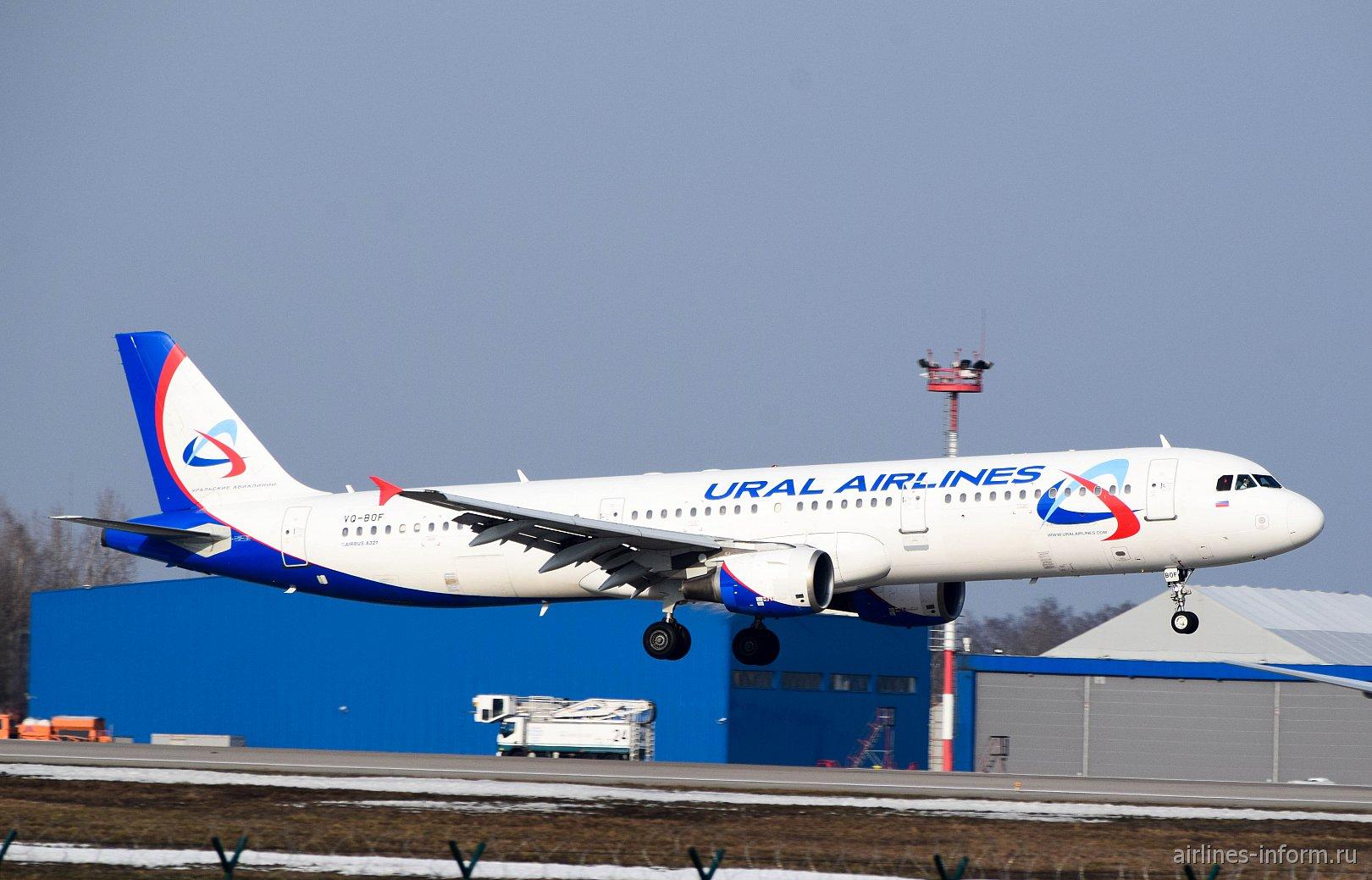 Airbus A321 Уральских авиалиний взлетает в аэропорту Домодедово