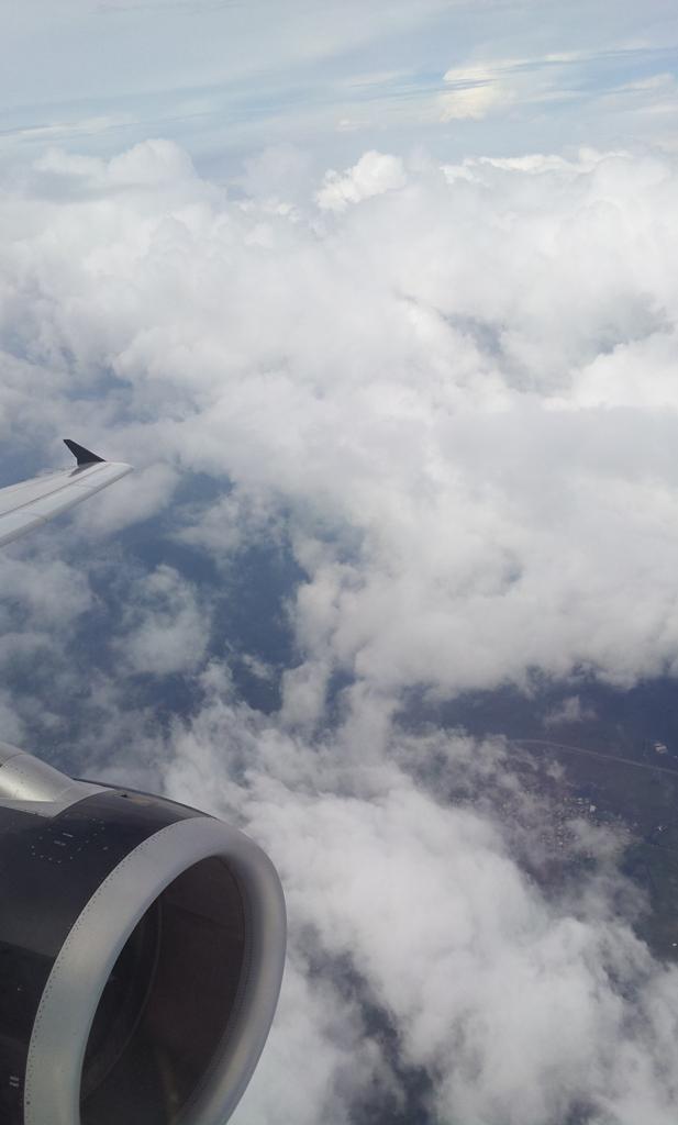 Рейс Гвадалахара-Мехико авиакомпании Volaris