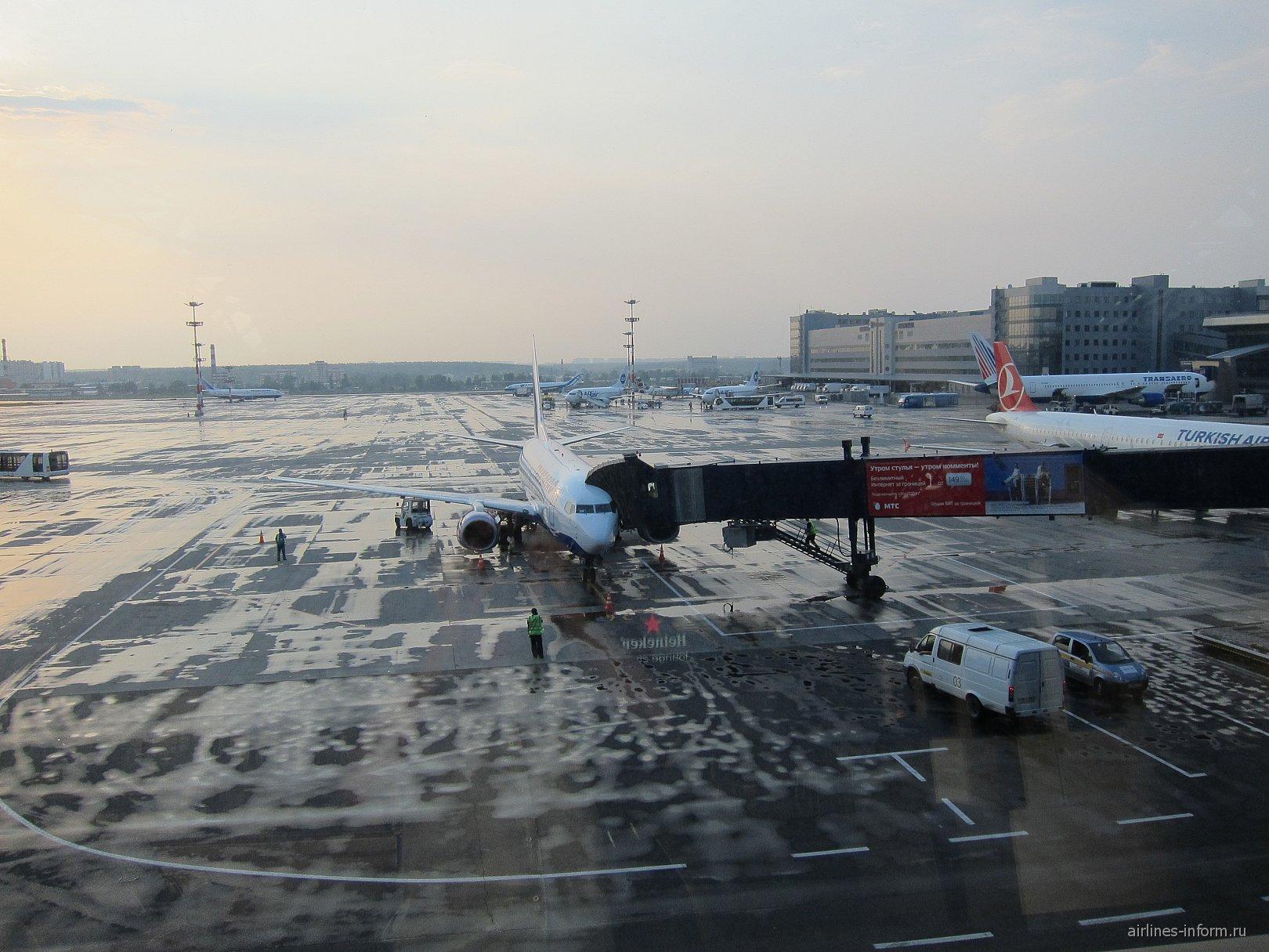 Перрон аэропорта Внуково