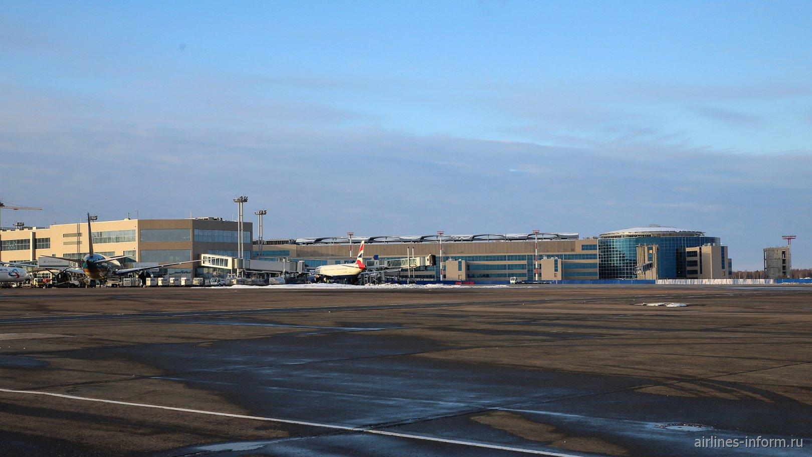 Новое крыло для международных рейсов в аэропорту Домодедово