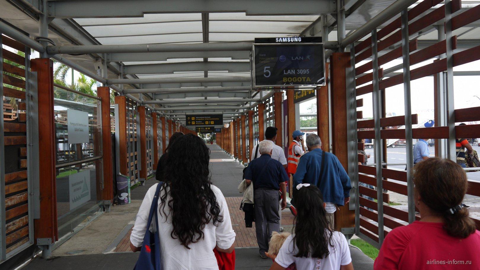 Галерея выходов на посадку в аэропорту Картахена Рафаэль Нуньес