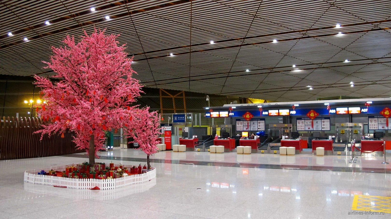 Зона регистрации пассажиров 1-го и бизнес классов Air China в Т3 аэропорта Пекин Столичный