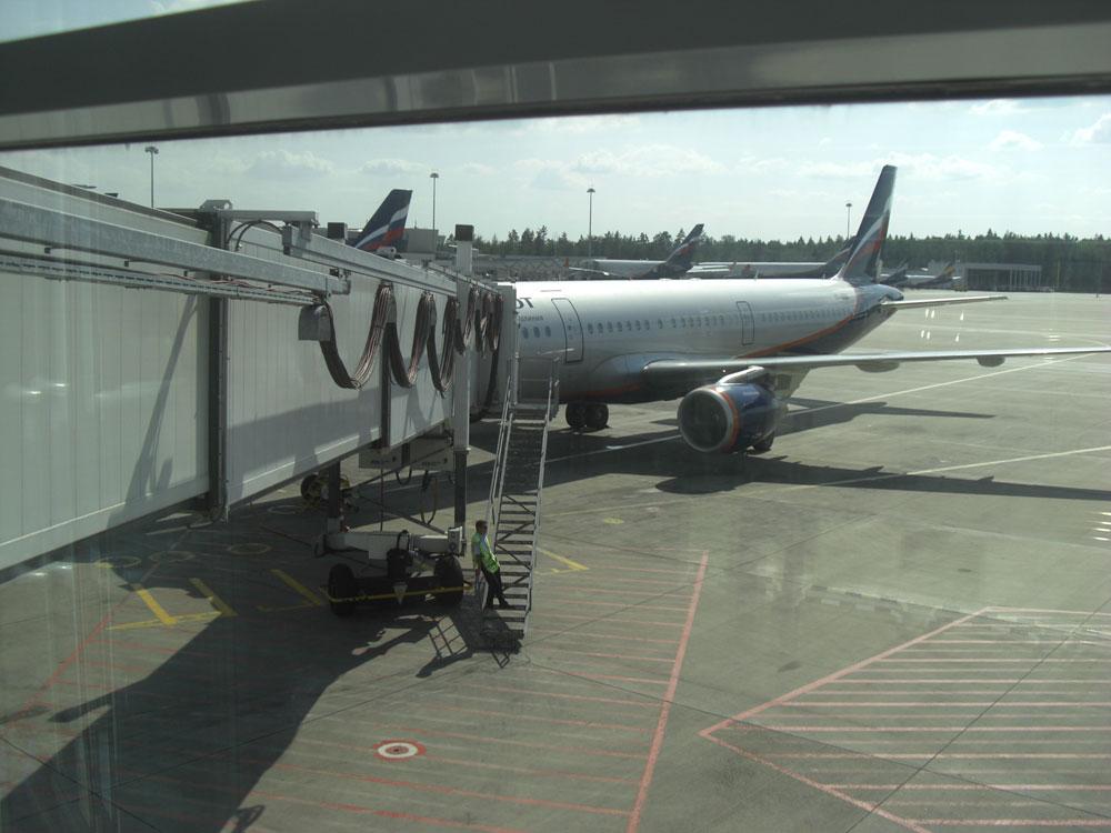 Airbus A321 Аэрофлота в аэропорту Шереметьево