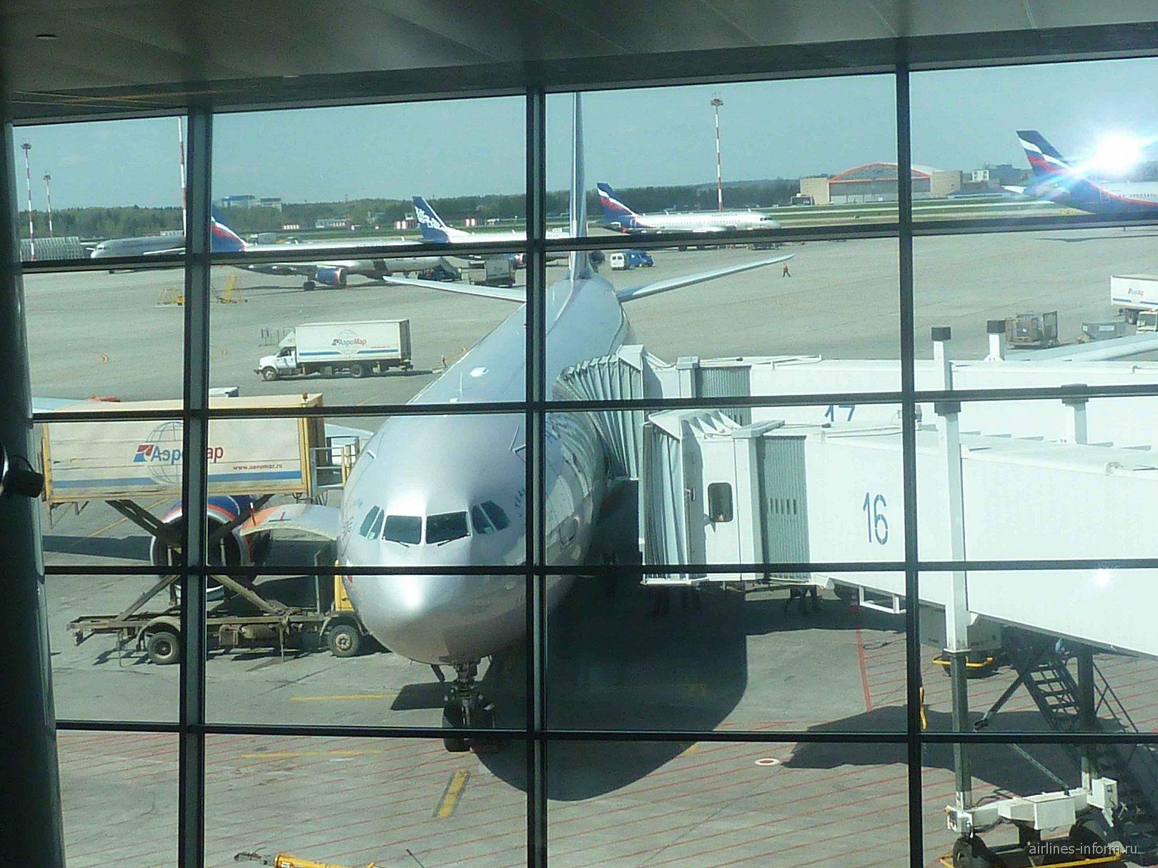 Рейс Аэрофлота с Камчатки прибыл в Москву