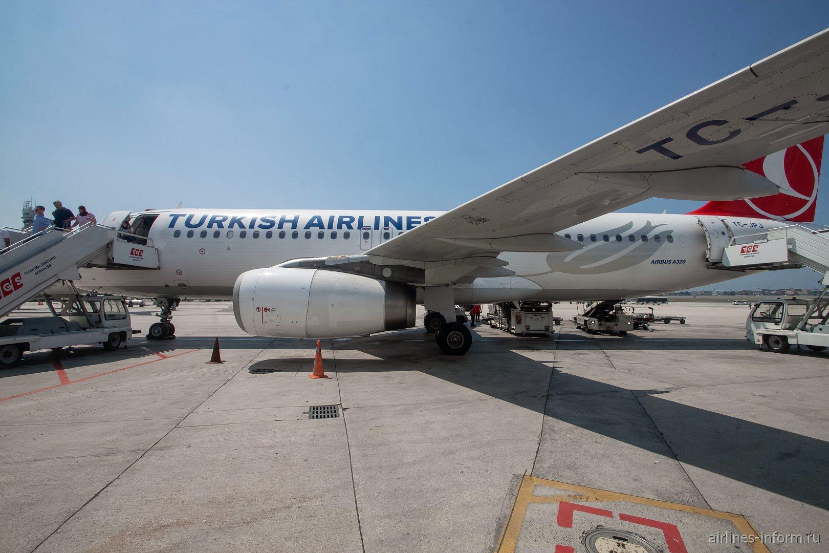 Widen Your World. Бари - Стамбул TK1446 Turkish Airlines