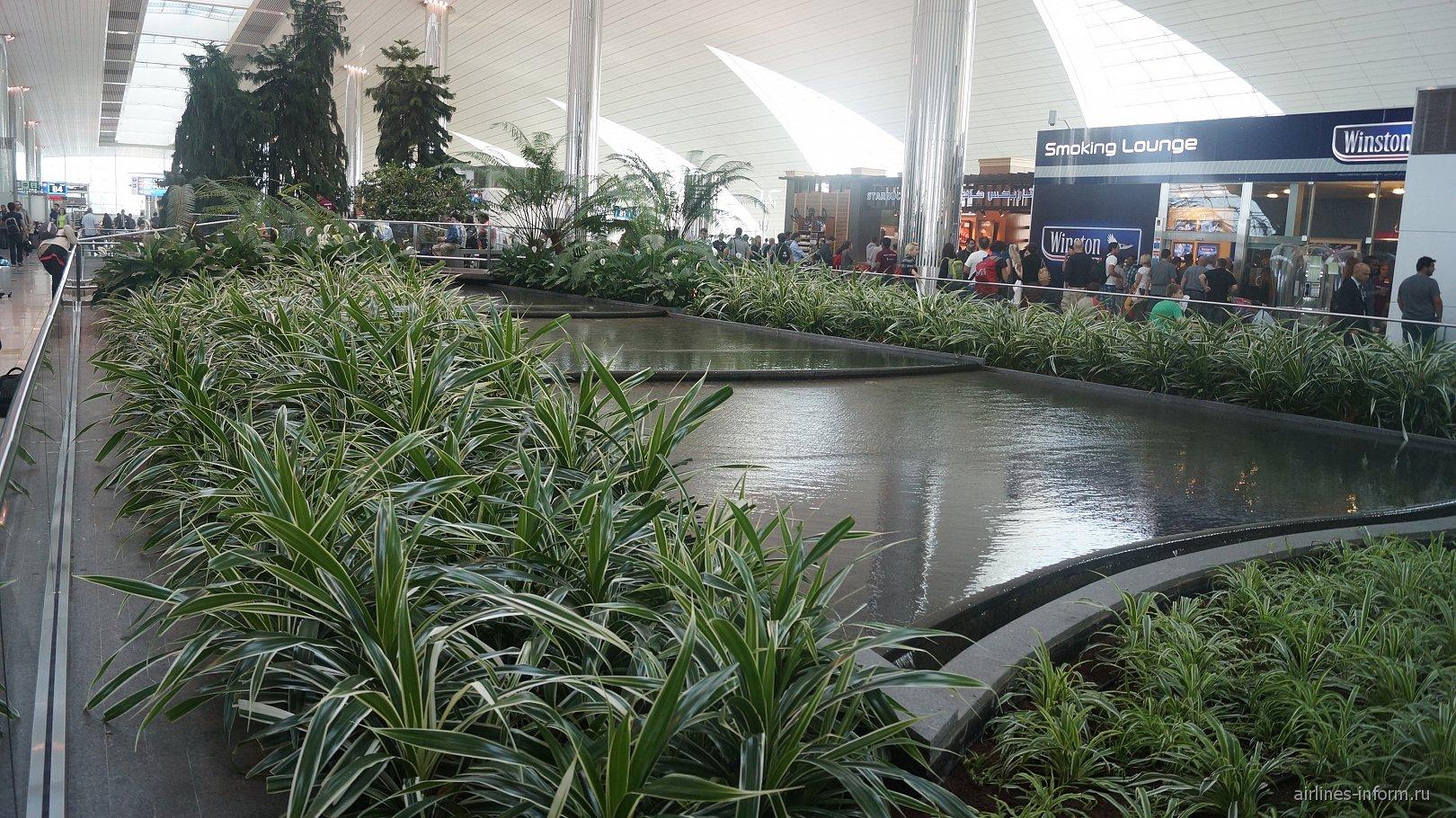 Искусственный оазис в аэропорту Дубай