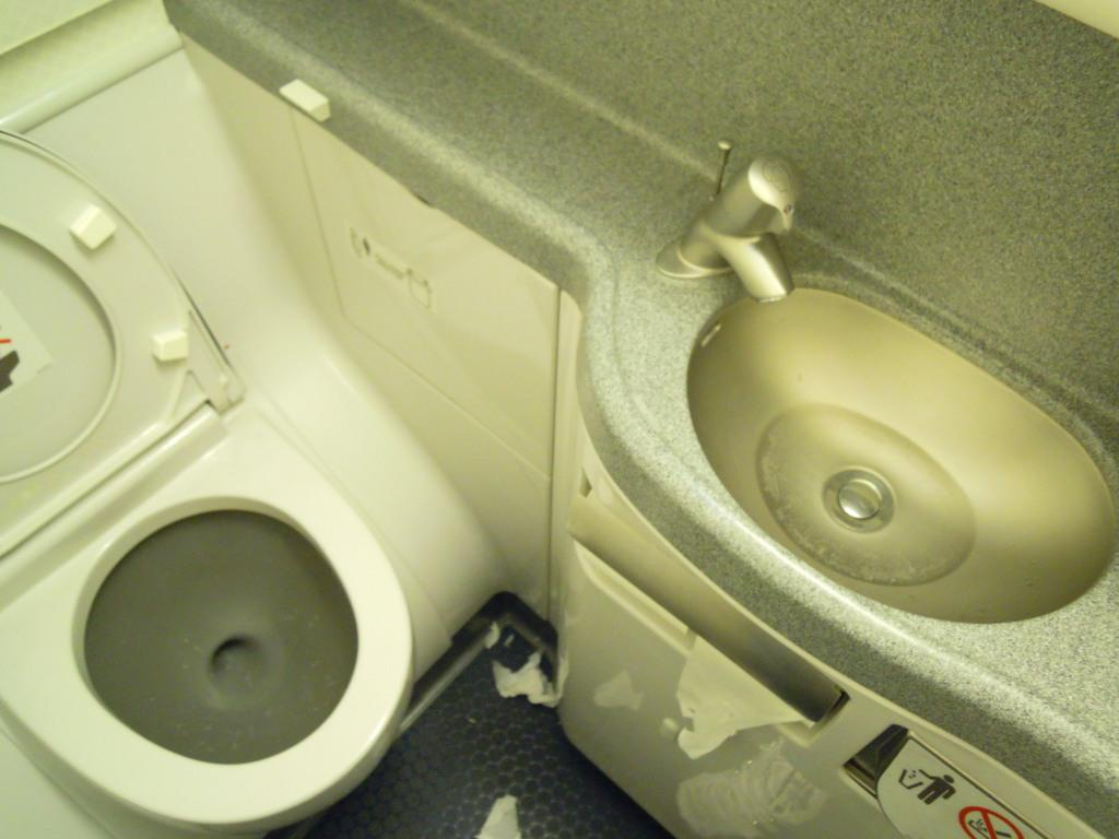 Restroom of a Boeing 737-800 of American Airlines