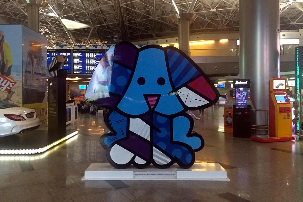 Пес по кличке Бадди в аэропорту Москва Внуково
