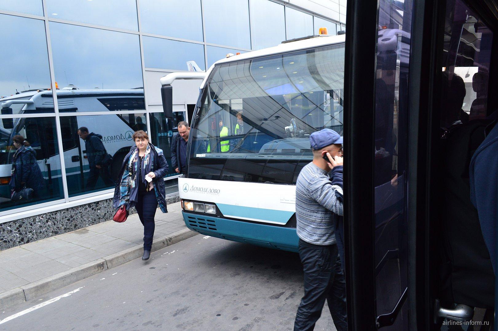 Посадка в автобусы