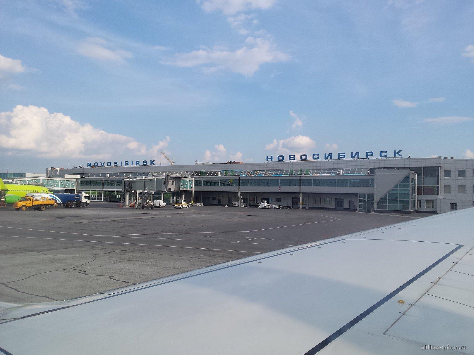 Терминал внутренних линий аэропорта Новосибирск Толмачево