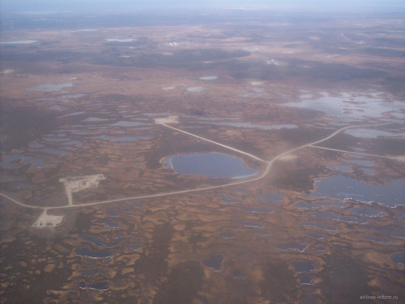 тайга и болота