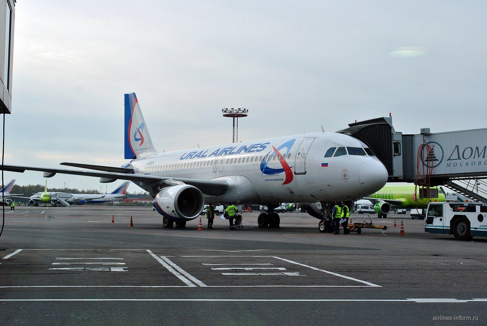 Самолет Airbus A320 Уральских авиалиний в аэропорту Домодедово