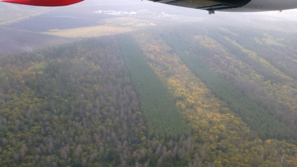 Рейс Самара-Саратов авиакомпании Оренбуржье