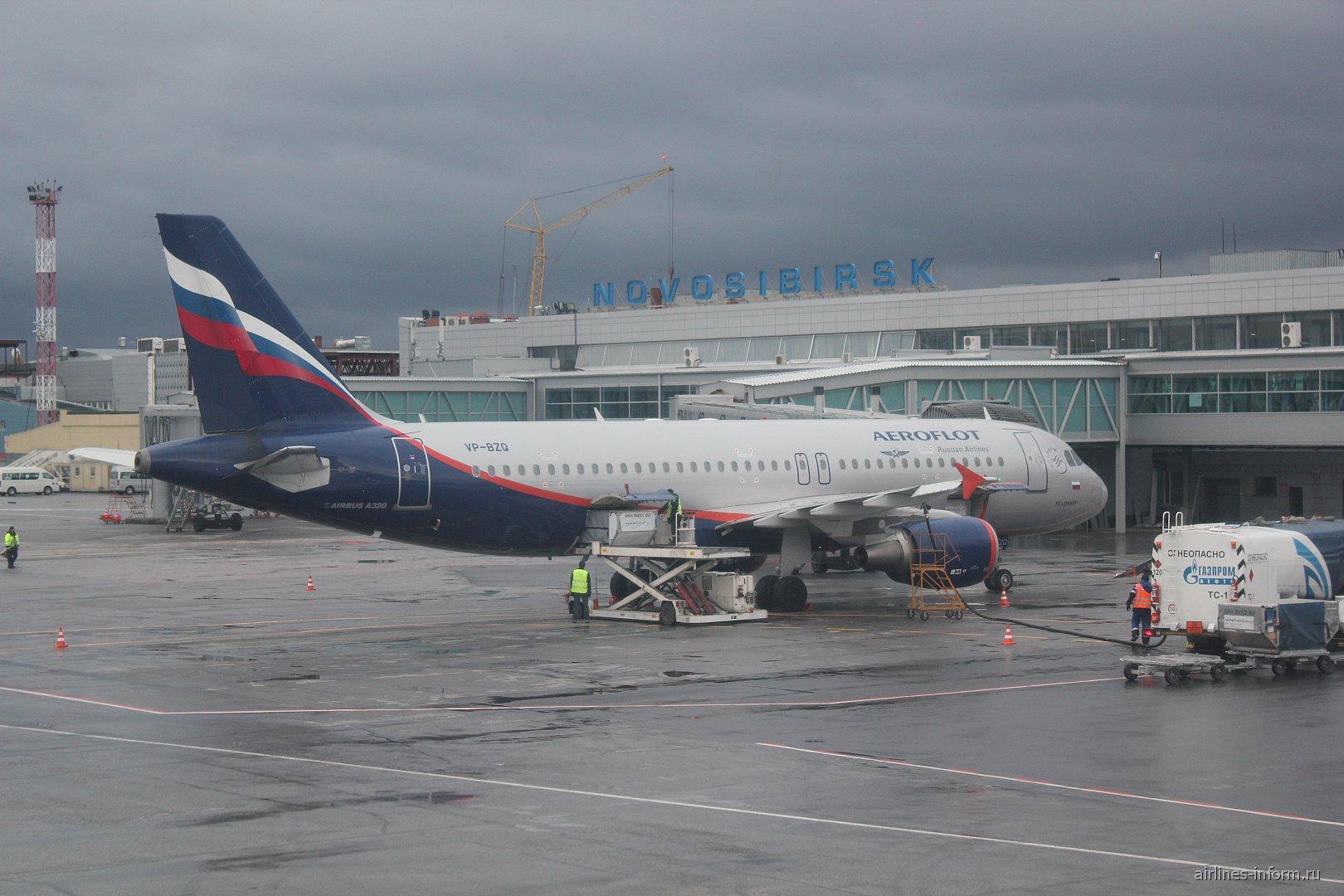 Airbus A320 Аэрофлота в аэропорту Новосибирск Толмачево