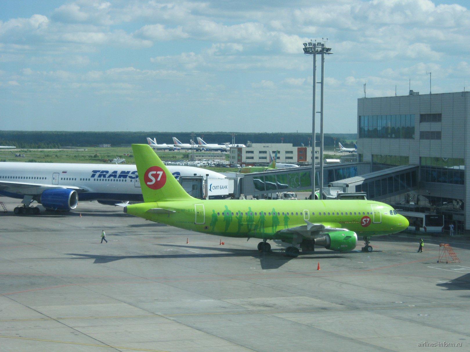 Airbus A319 S7 Airlines в аэропорту Домодедово