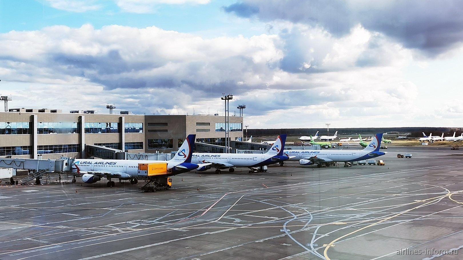 Самолеты Уральских авиалиний в московском аэропорту Домодедово