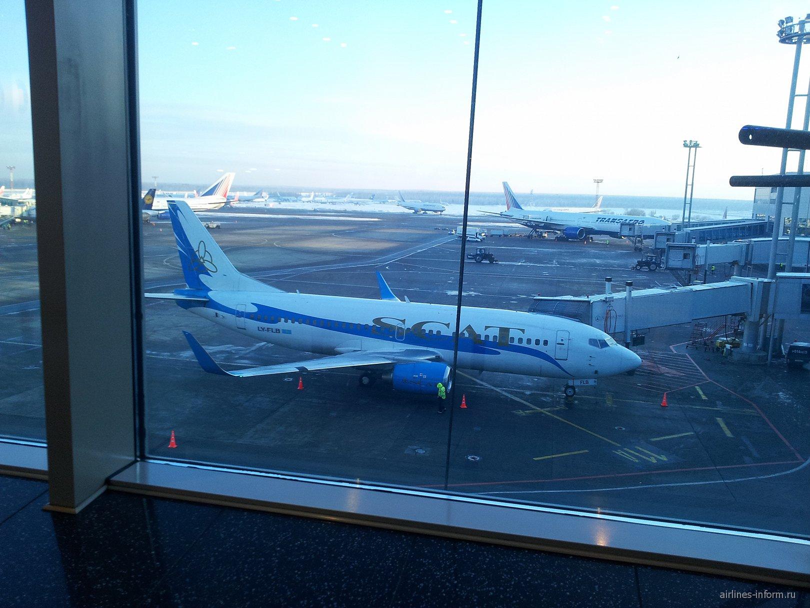 Боинг-737-500 авиакомпании СКАТ в аэропорту Домодедово
