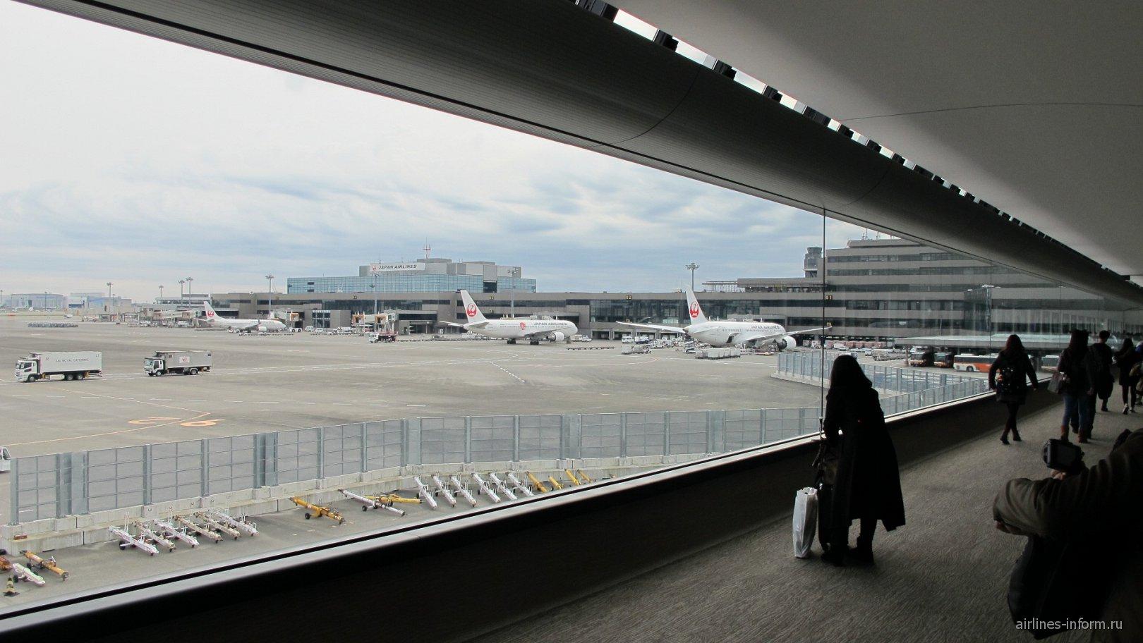 Переход со стеклянной стеной в аэропорту Токио Нарита