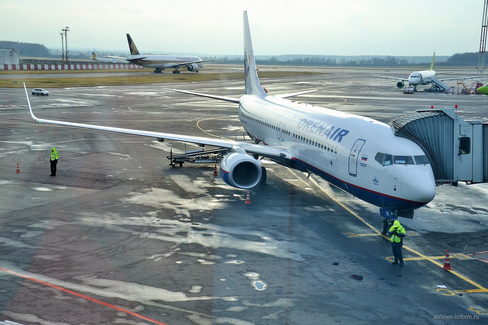 Боинг 737-800 Оренбургских Авиалиний в аэропорту Домодедово