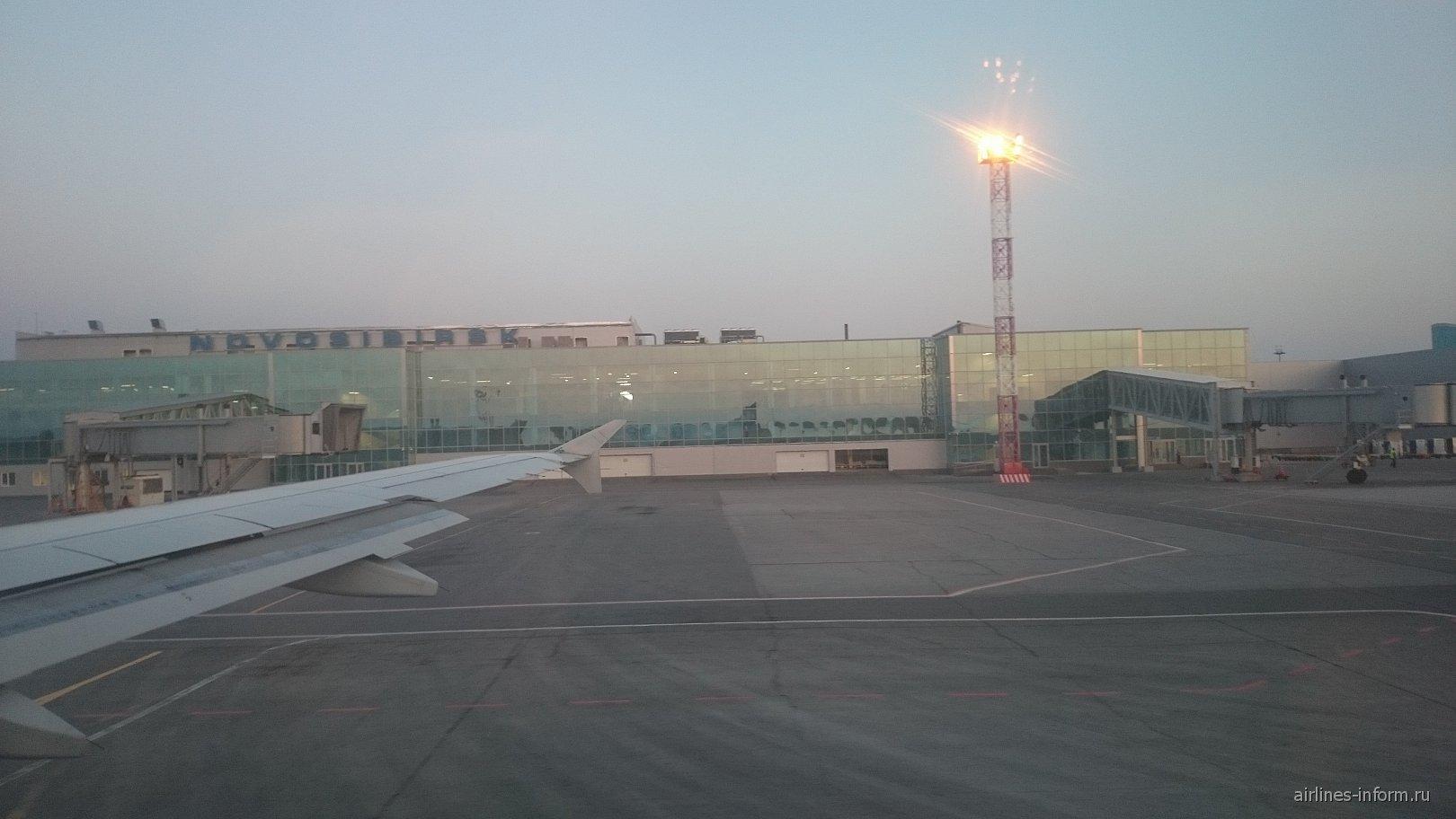 Терминал международных воздушных линий аэропорта Новосибирск Толмачево