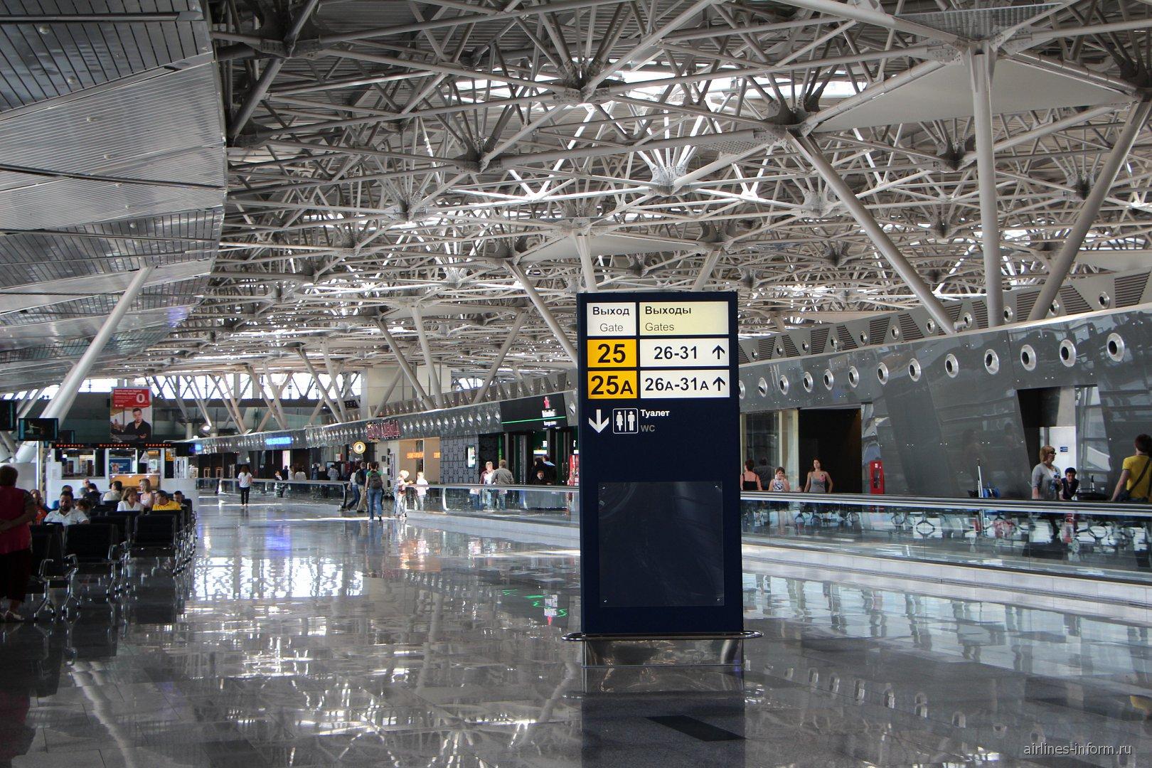 Чистая зона в аэропорту Внуково