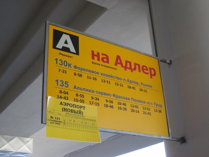 Автобусы в Адлер из аэропорта Сочи