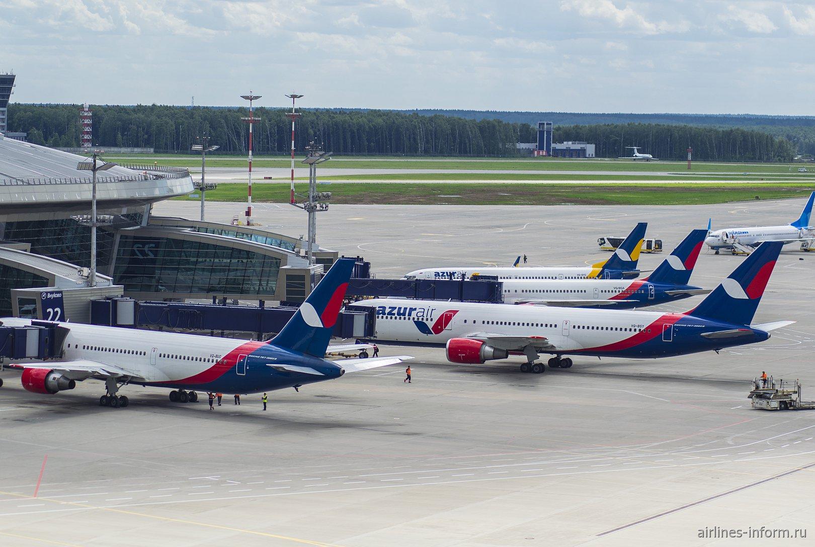 Самолеты авиакомпании Azur Air у пассажирского терминала аэропорта Внуково