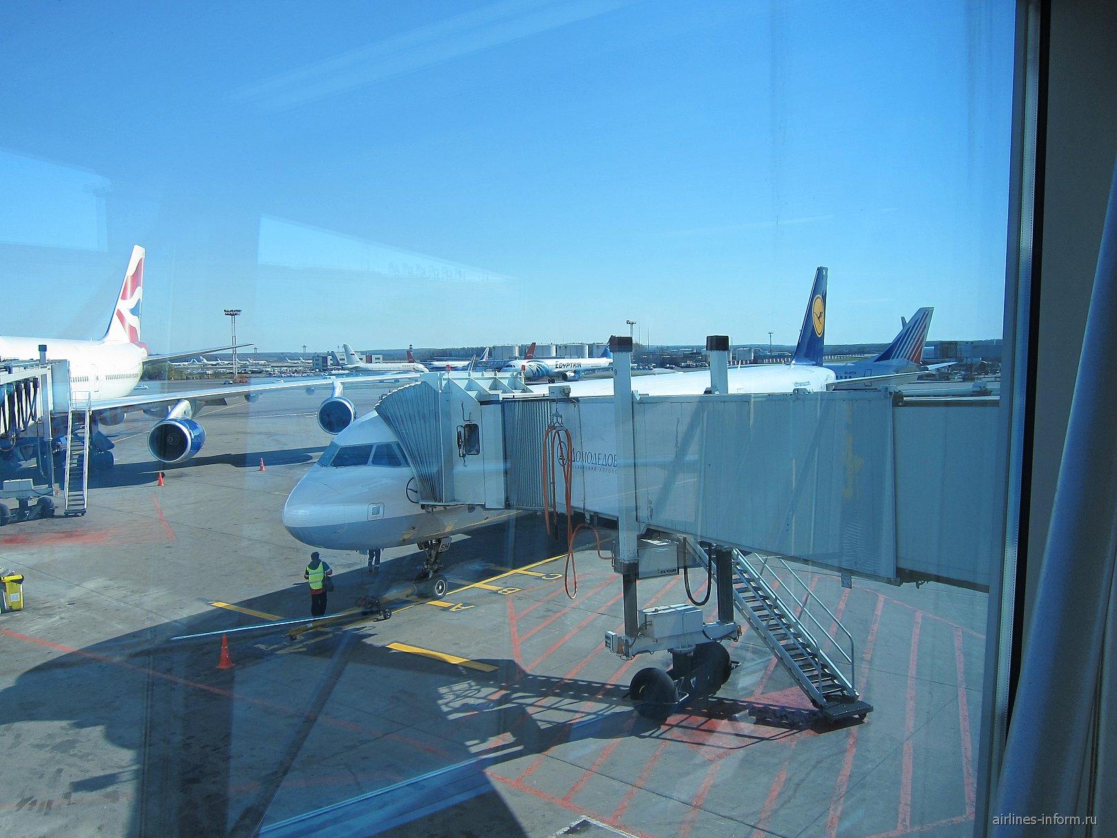 Рейс Люфтганзы Москва-Франкфурт