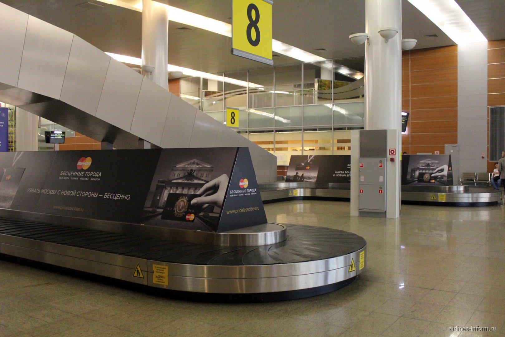 В зале выдачи багажа терминала D аэропорта Шереметьево