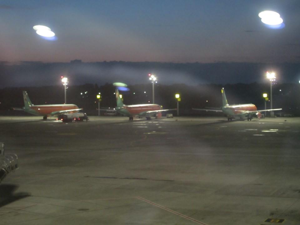 Самолеты Windrose в аэропорту Борисполь