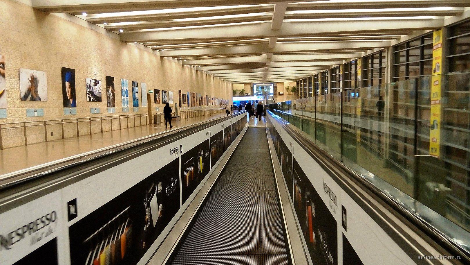 Переход к паспортному контролю в аэропорту Тель-Авив Бен Гурион