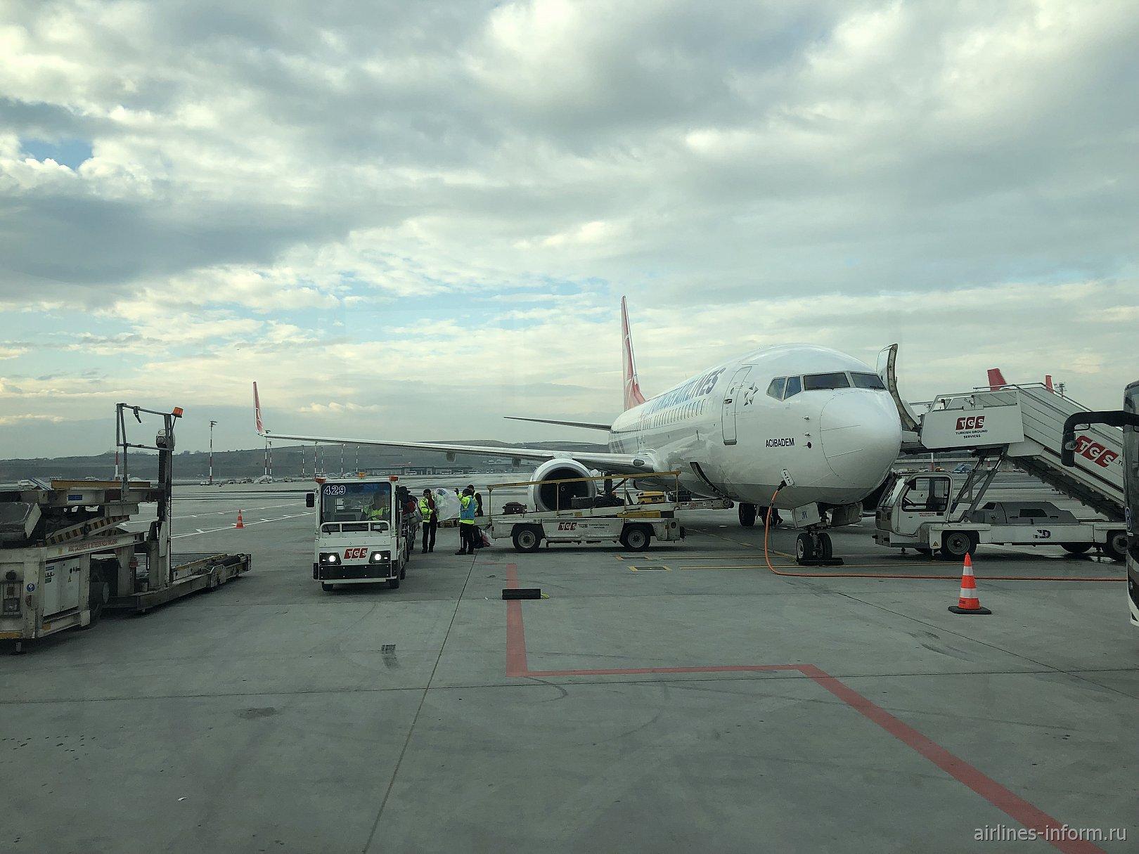 """Новый-Старый Шарм""  Шарм-эль-шейх-Стамбул  Turkish airlines B737-800"