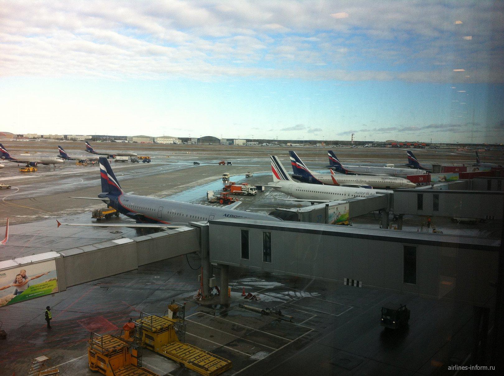Вид на перрон терминала E