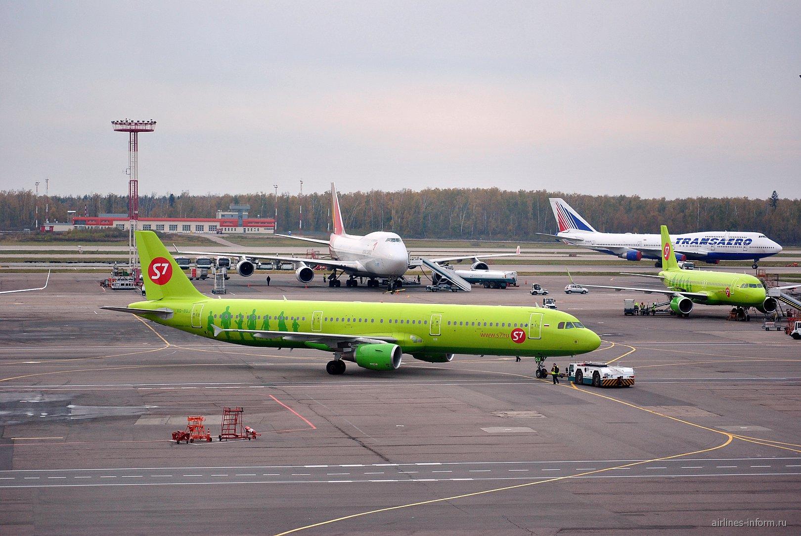 Airbus A321 S7 Airlines в аэропорту Домодедово