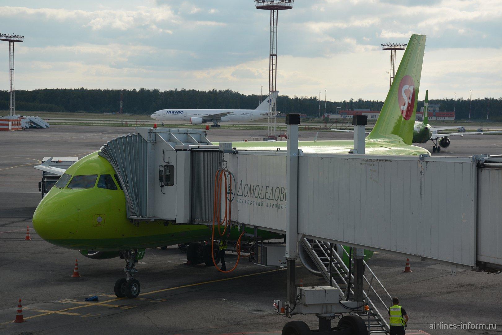 Зеленый перелет между российскими столицами