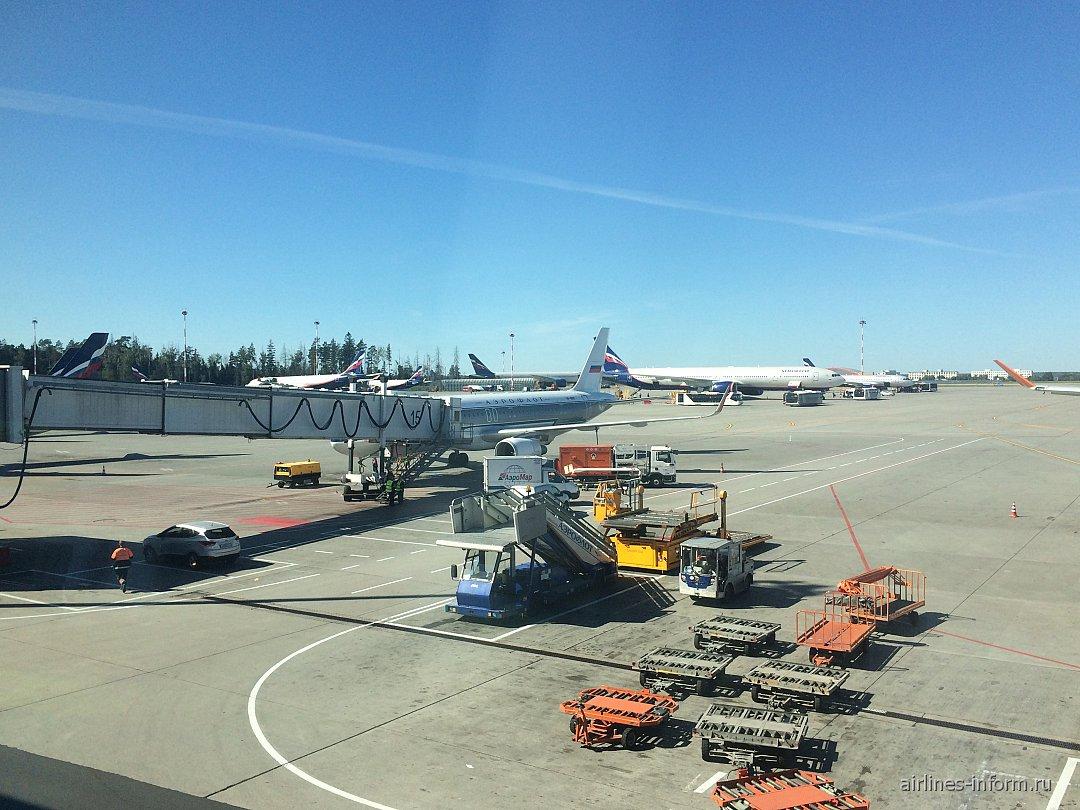 Билеты на самолет москва анапа туда и обратно аэрофлот билеты на самолет волгоград сочи прямой рейс