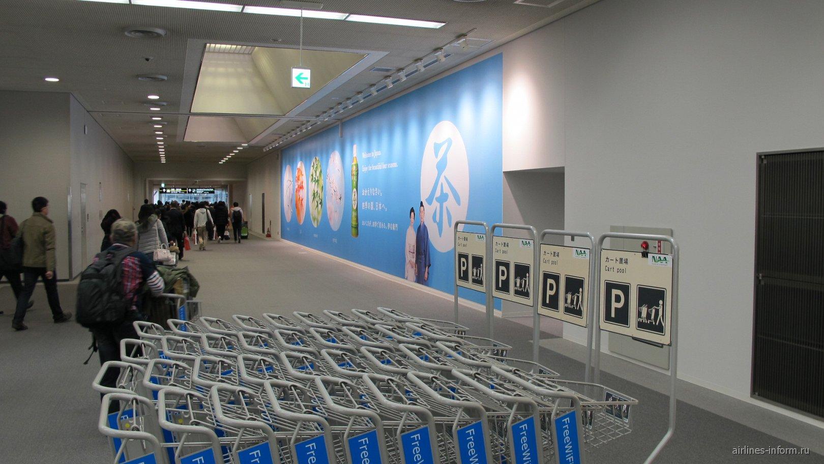 В зоне прилета в аэропорту Токио Нарита