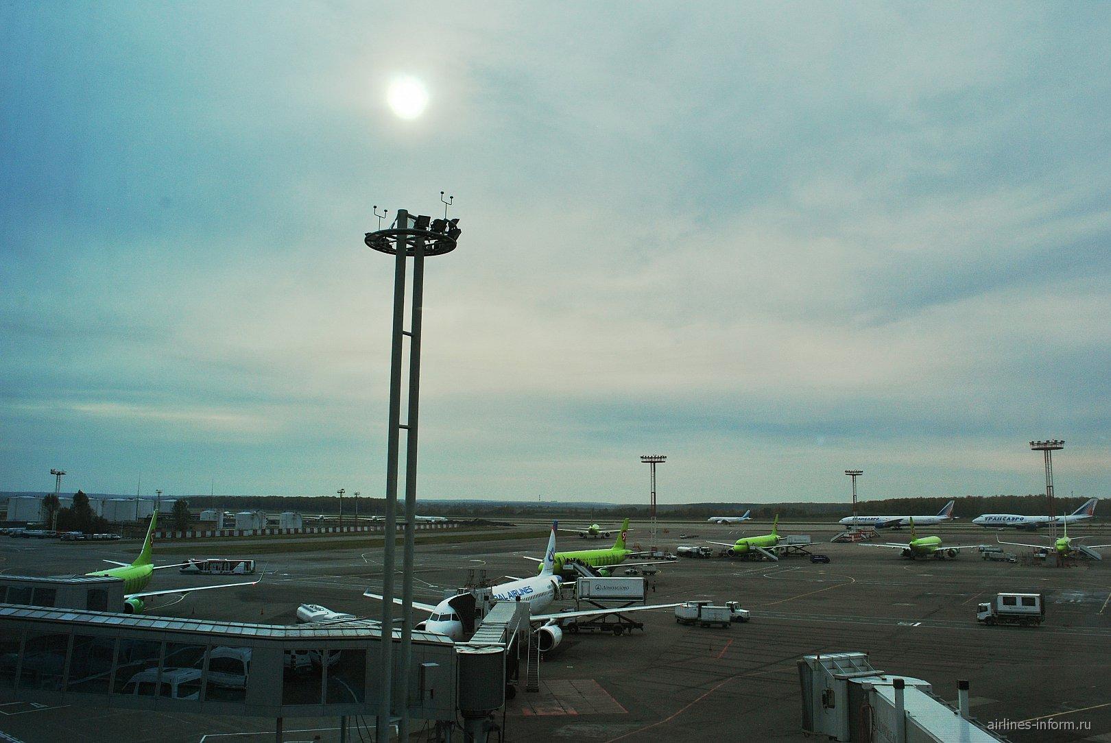 Летное поле аэропорта Домодедово