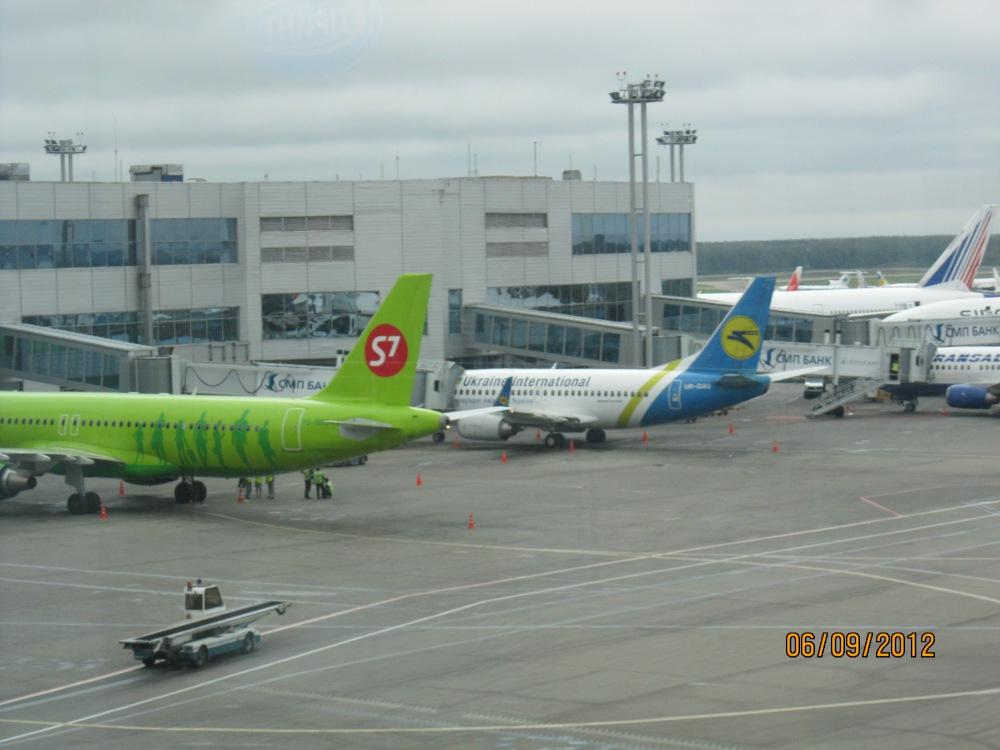 Рейс МАУ Киев-Москва прибыл в аэропорт Домодедово