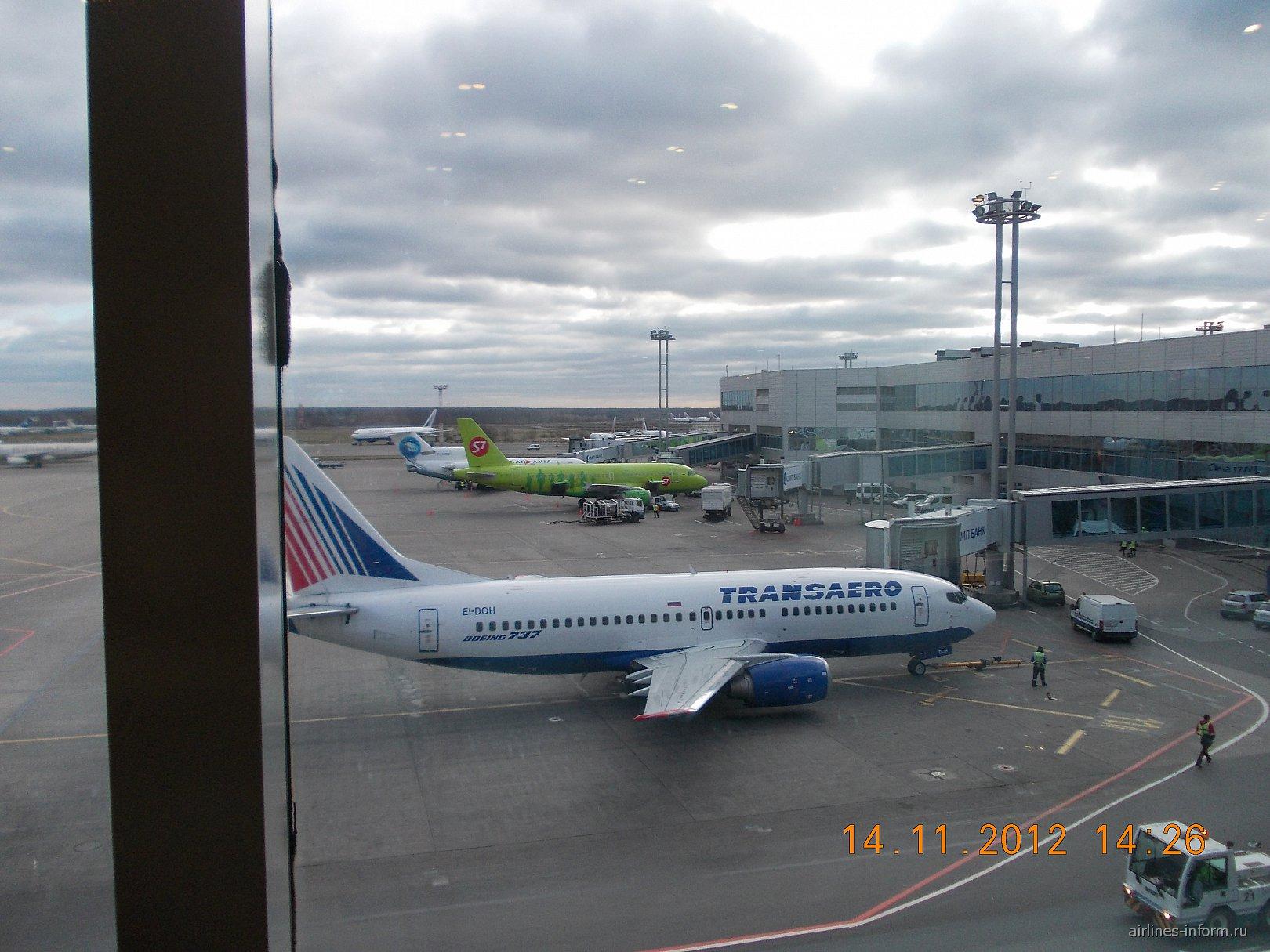 Боинг-737 Трансаэро в аэропорту Домодедово