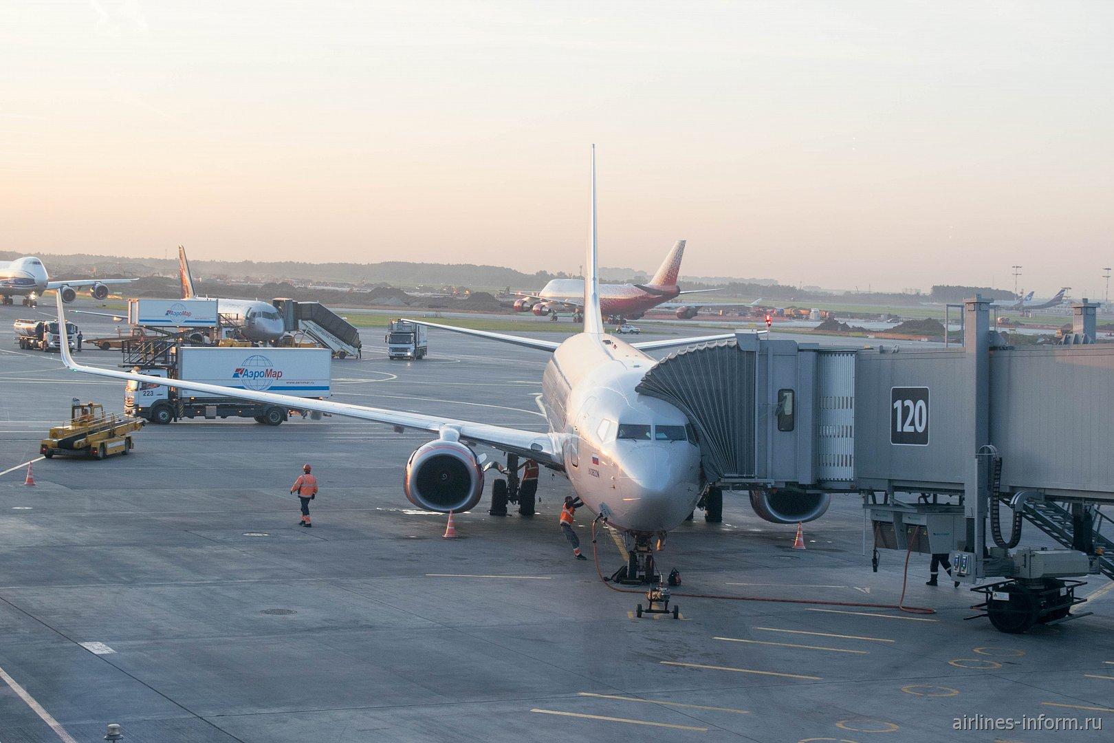 "Сочи - Москва, Аэрофлот, Boeing 737-800, VQ-BHD ""И. Фролов"""